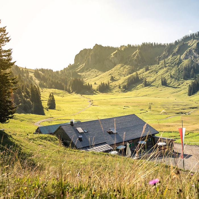 Die Alpe Stongen samt Panorama im Hintergrund | Foto: Weissengruber & Partner