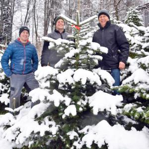 Familie Spiegel, Ländle Christbaum