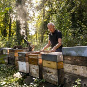 Hermann Bohle Mit Seinen Bienenkästen Im Wald | Foto: Weissengruber & Partner